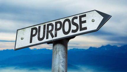 purpose in life better sleep